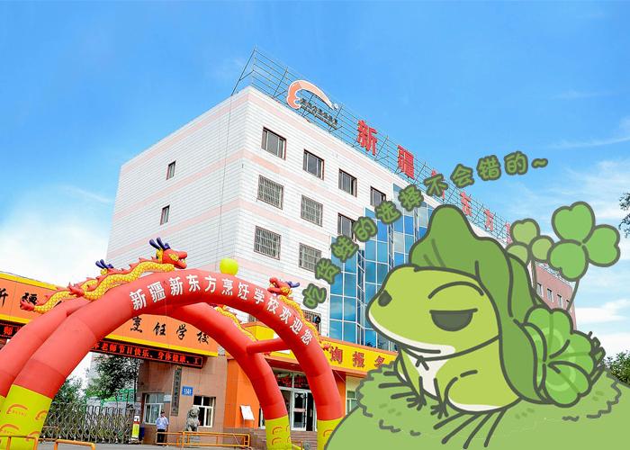蛙来新疆新东方